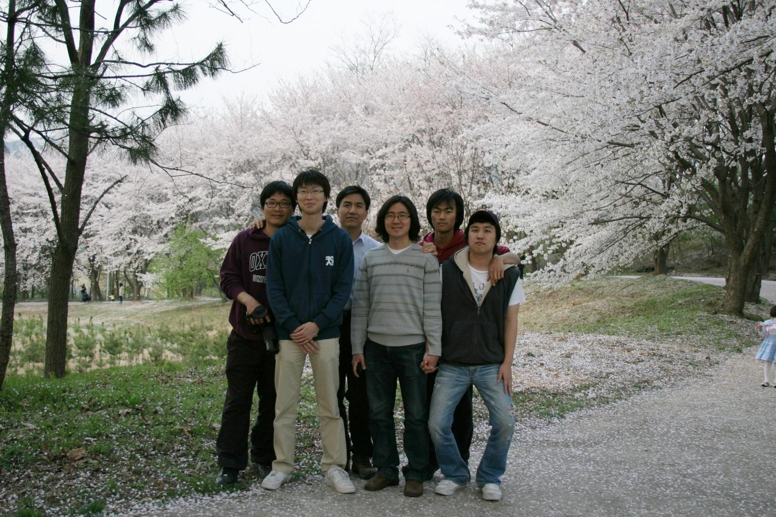 20110417_벚꽃길2.jpg